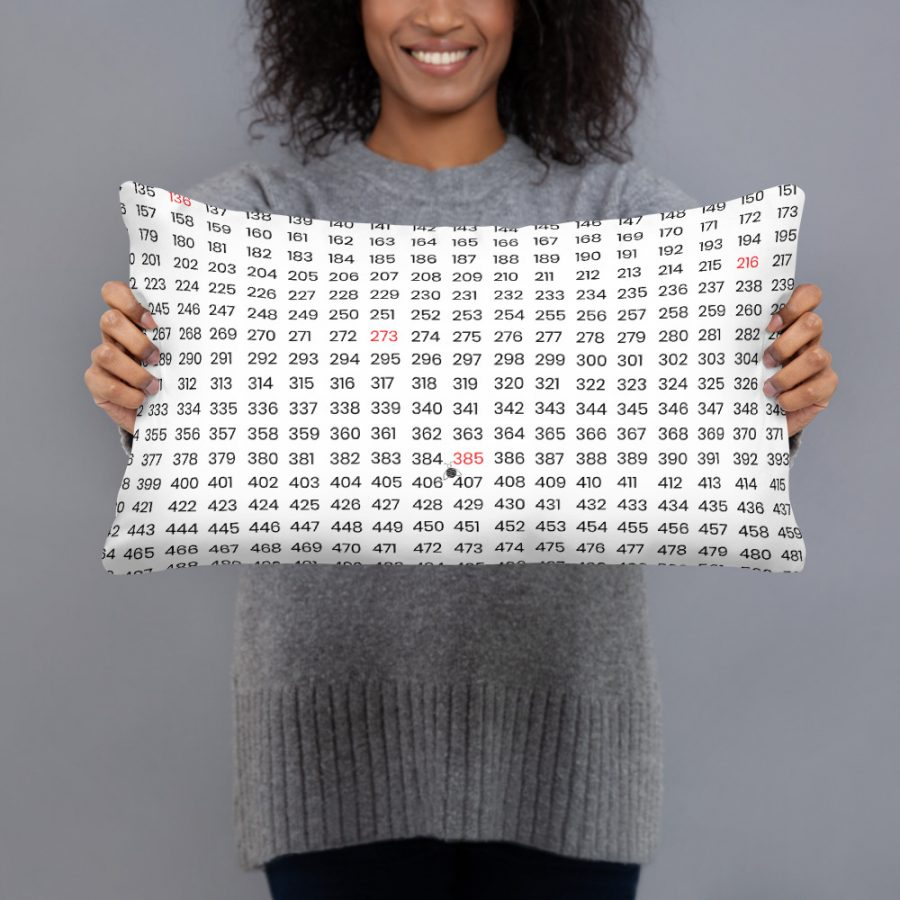 all over print basic pillow 20x12 front 601407f67fff7